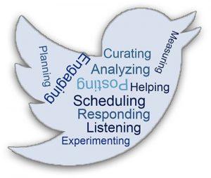 social-media-responsibility-bird